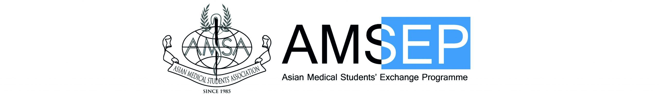 AMSEP INTERNATIONAL